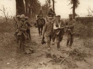 origins of ww1 essay View essay - history essay from hst 702 at ryerson origins of the first world war origins of the first world war by xiao tang (jessica) du 500623518 x5du@ryersonca sec ba0 word.